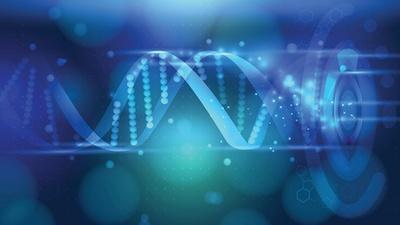 using-crispr-to-understand-role-of-genes-lost-in-pws.jpg