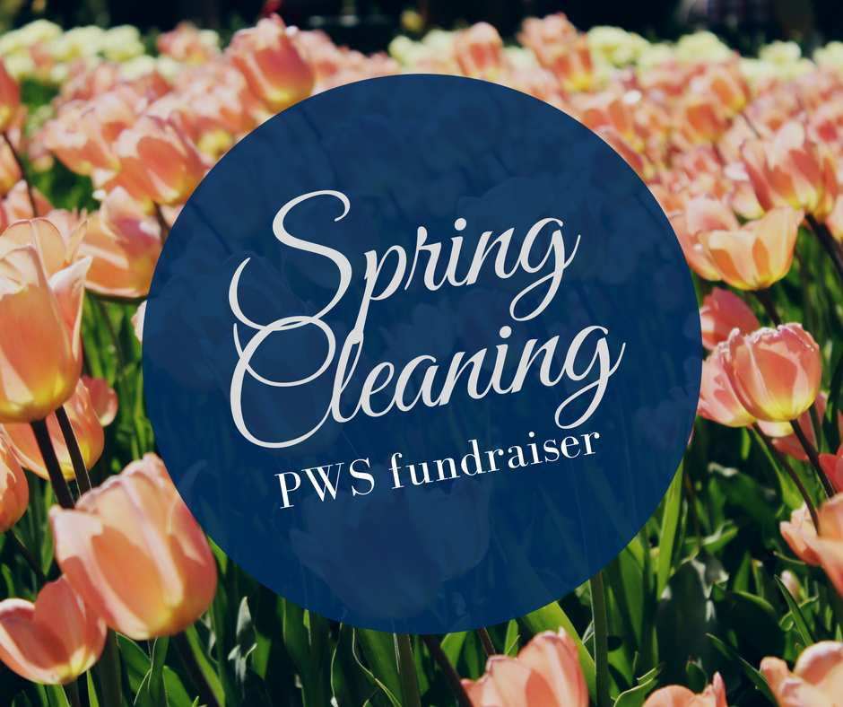 Spring Cleaning Fundraiser (1)